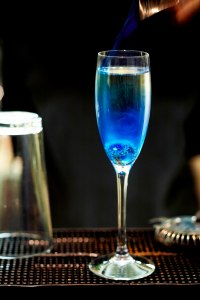 zenna-blue-blood-champagne