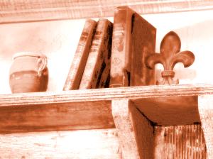 books-on-a-shelf4